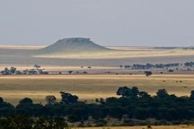 http://www.worldpropertychannel.com/featured-columnists/great-destinations-africa-tourism-tanzania-yoga-safari-shannon-paige-serengeti-resorts-serengeti-national-park-sayari-camp-6436.php
